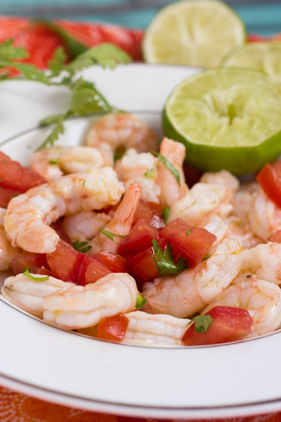 Shrimp Ceviche from The Girl In The Little Red Kitchen