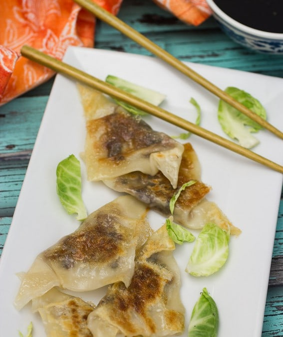 Brussels Sprouts and Bacon Dumplings {Dumplings All Day Wong + Giveaway}