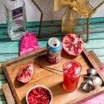 Pomegranate Gin Fizz-3