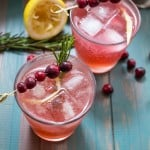 Cranberry Whiskey Sour-2