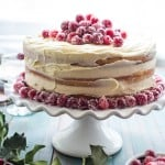 Cranberry Champagne Cake-6