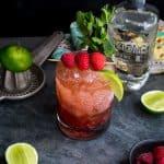Susan Palmer - Raspberry Mint Tequila Smash-3