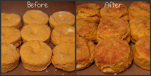 Before/After Biscuits