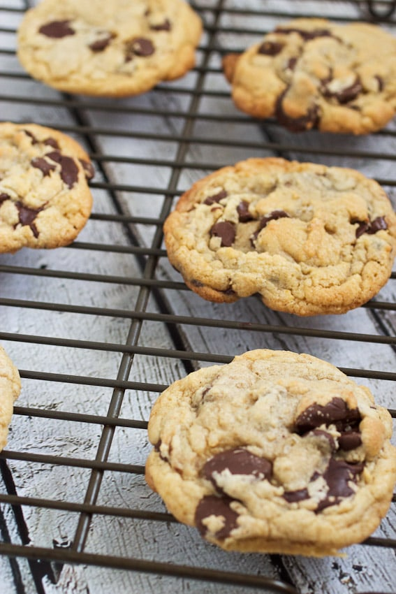 Signature Chocolate Chip Cookies from The Girl In The Little Red Kitchen Bake Shop