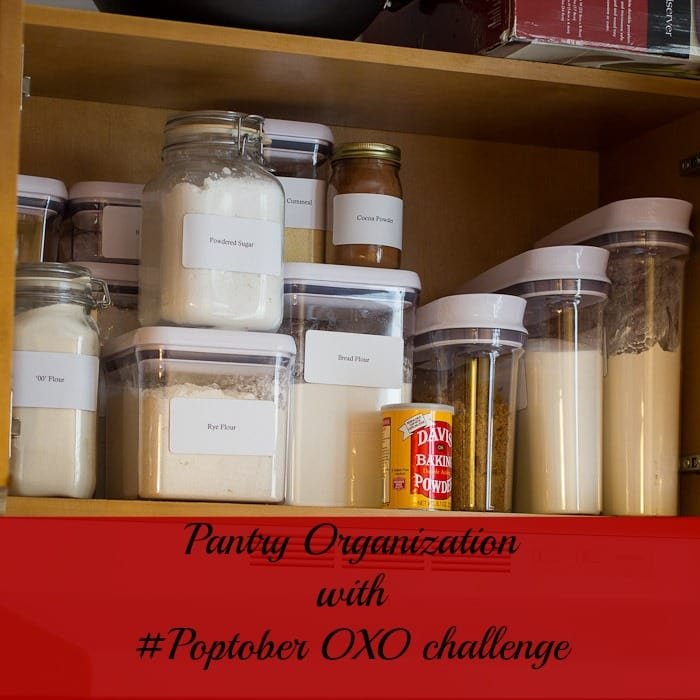 Oxo Pop Containers #Poptober from The Girl In the Little Red Kitchen