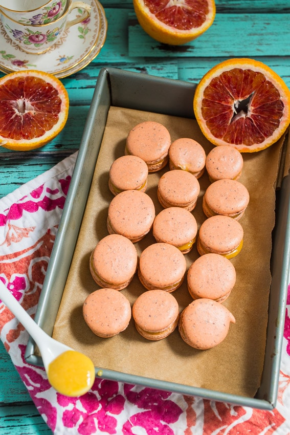 Blood Orange Macarons filled with blood orange curd | girlinthelittleredkitchen.com