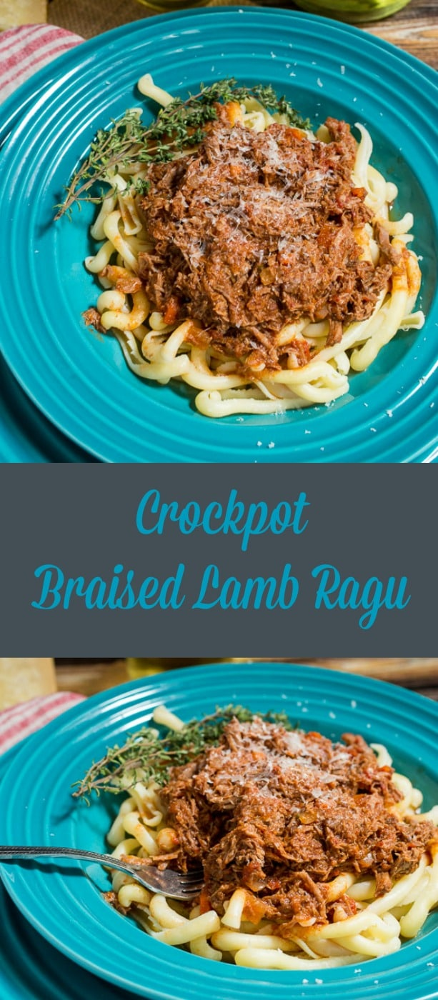 Slow Cooker Braised Lamb Ragu| girlinthelittleredkitchen.com