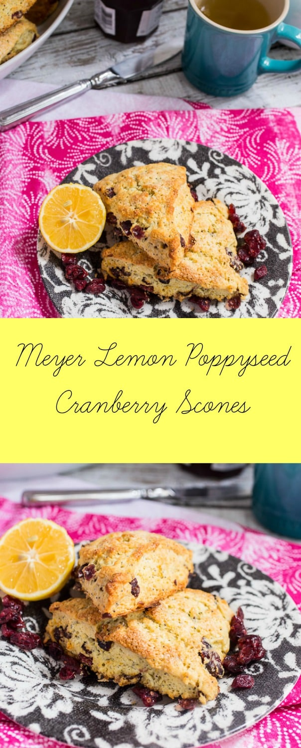 Meyer Lemon Poppyseed Cranberry Scone | girlinthelittleredkitchen.com