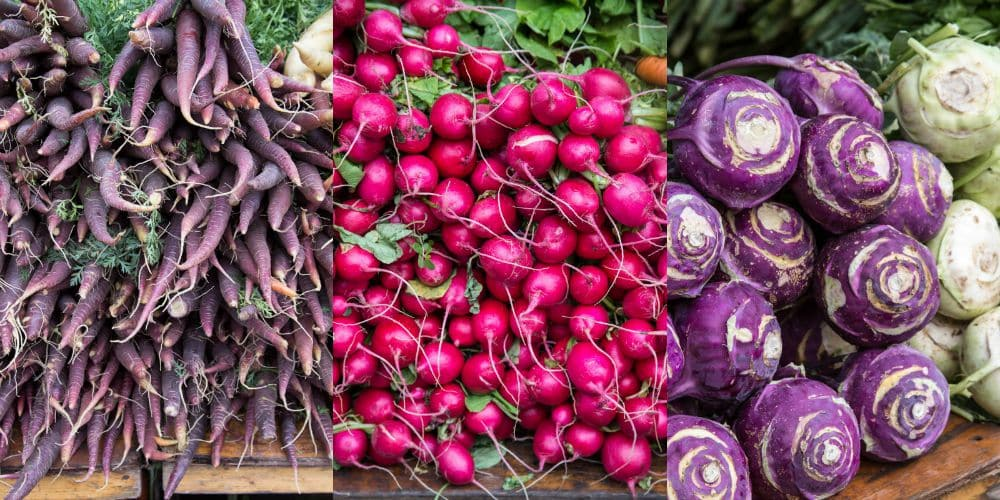 Union Square Greenmarket Vegetable Collage | girlinthelittleredkitchen.com